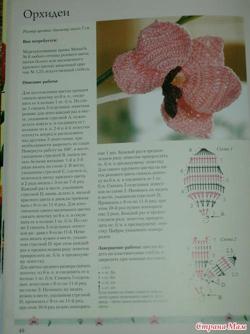 Связать цветок орхидею