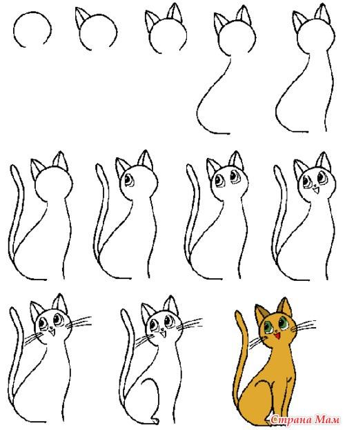 Кошка. Подробная схема