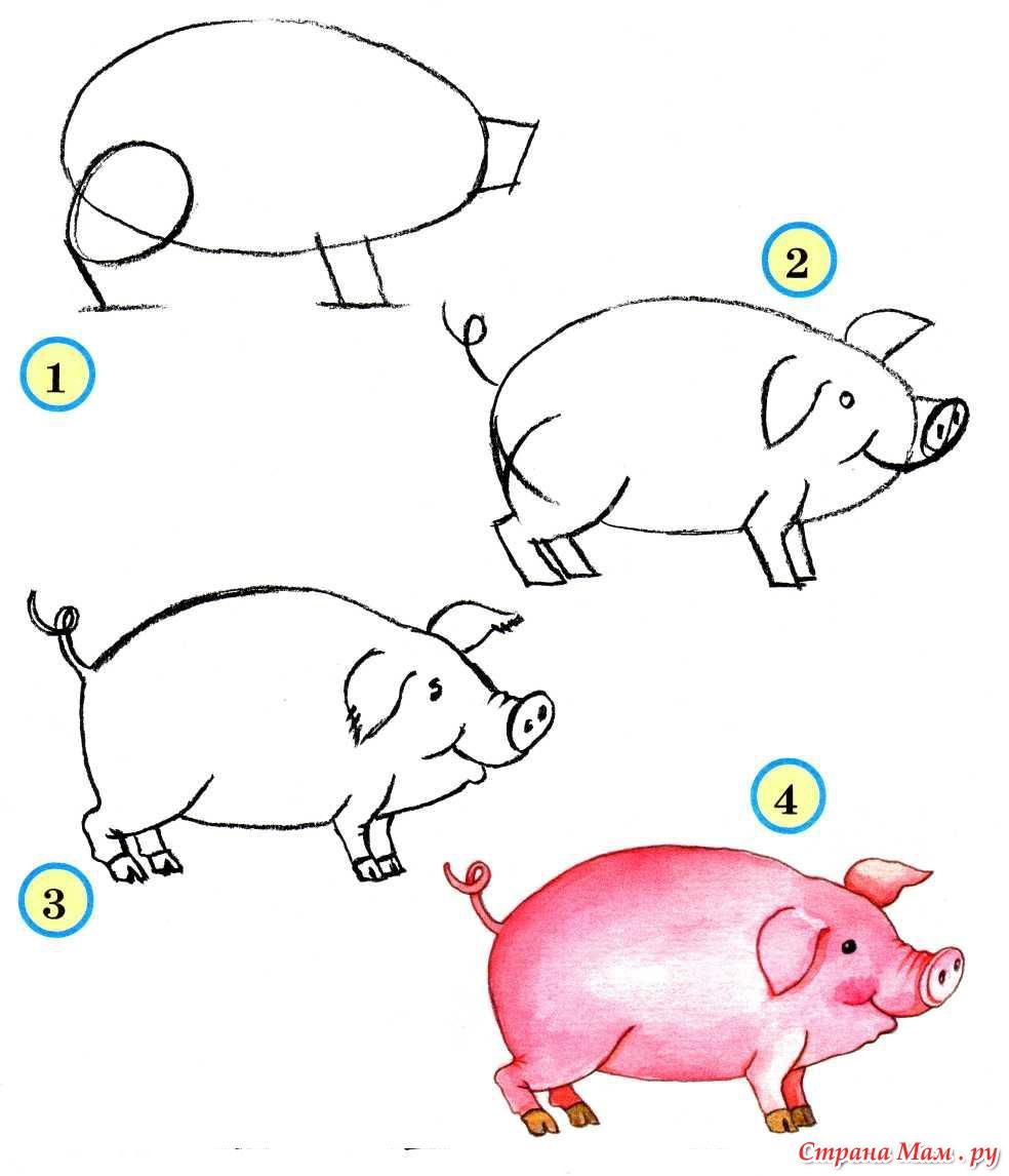 Животные рисунок карандашом поэтапно для детей 7
