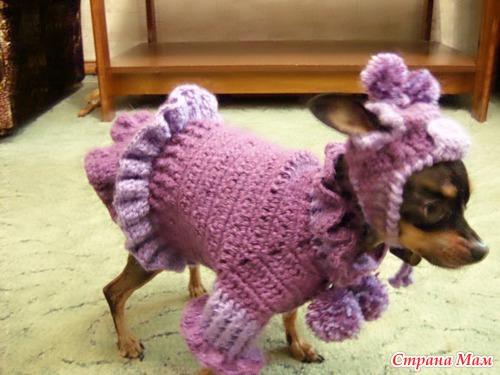 Платье для собак крючком