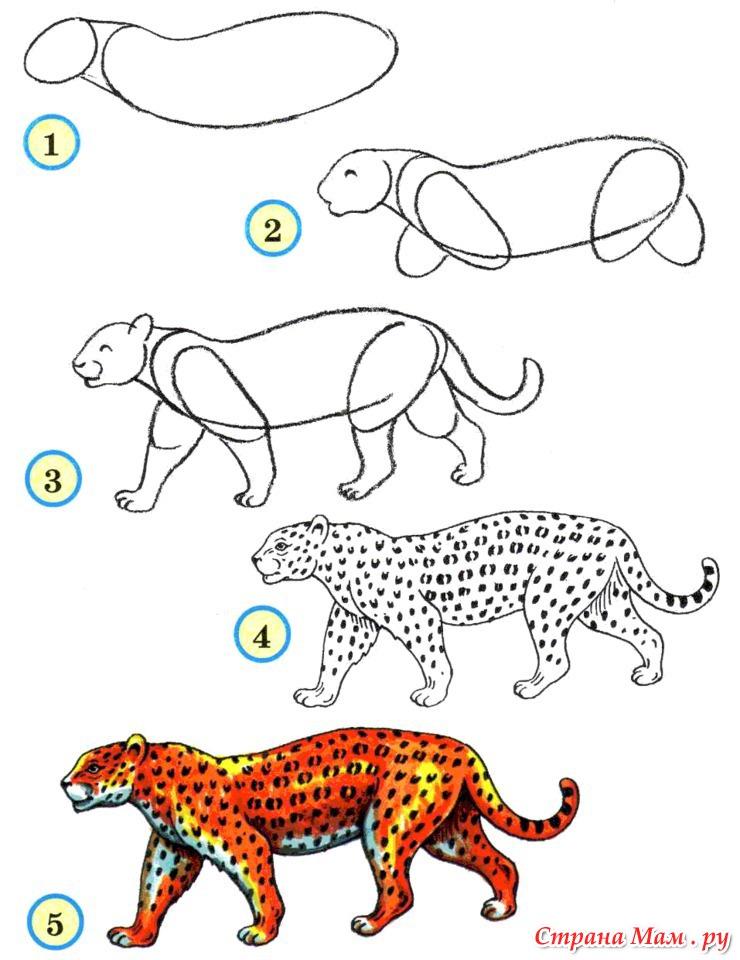 Рисунки животных с схемами