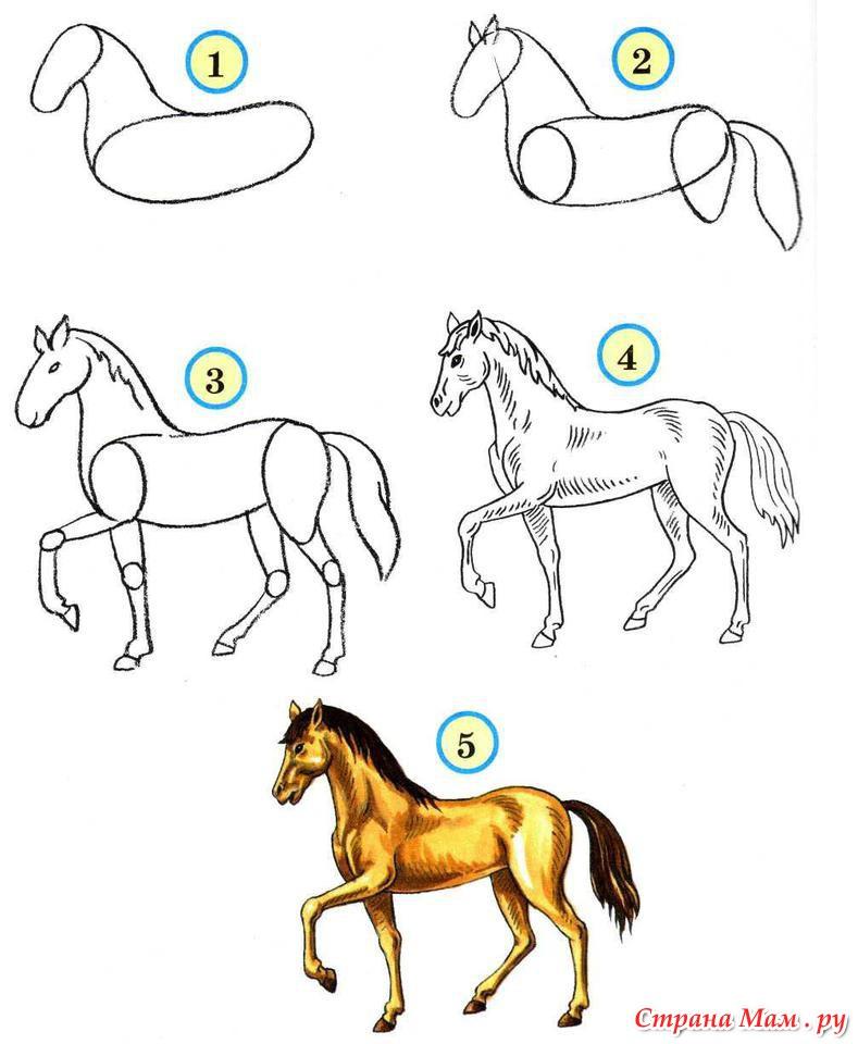 Лошадь рисунки карандашом для детей
