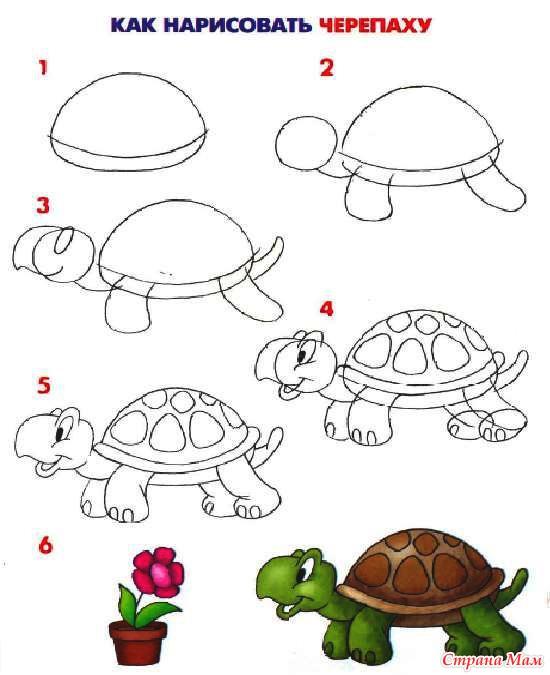 Черепаха пошагово