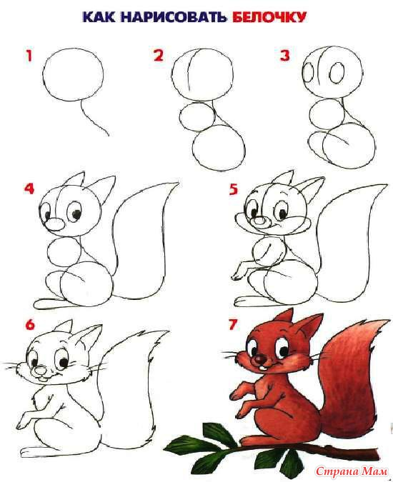 Подробная схема рисования. +