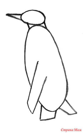 Пингвин. Подробная схема