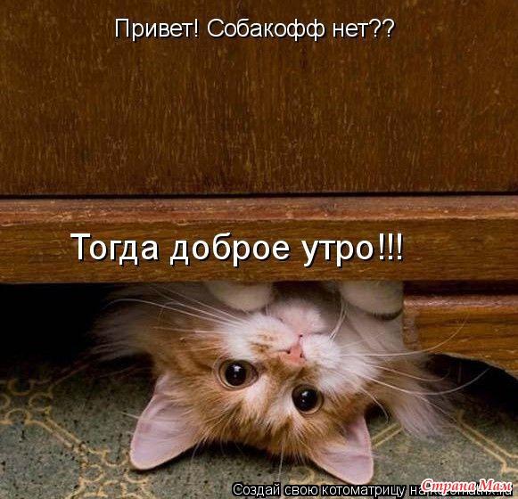 http://st.stranamam.ru/data/cache/2010jun/07/26/361217_89205-650x650.jpg