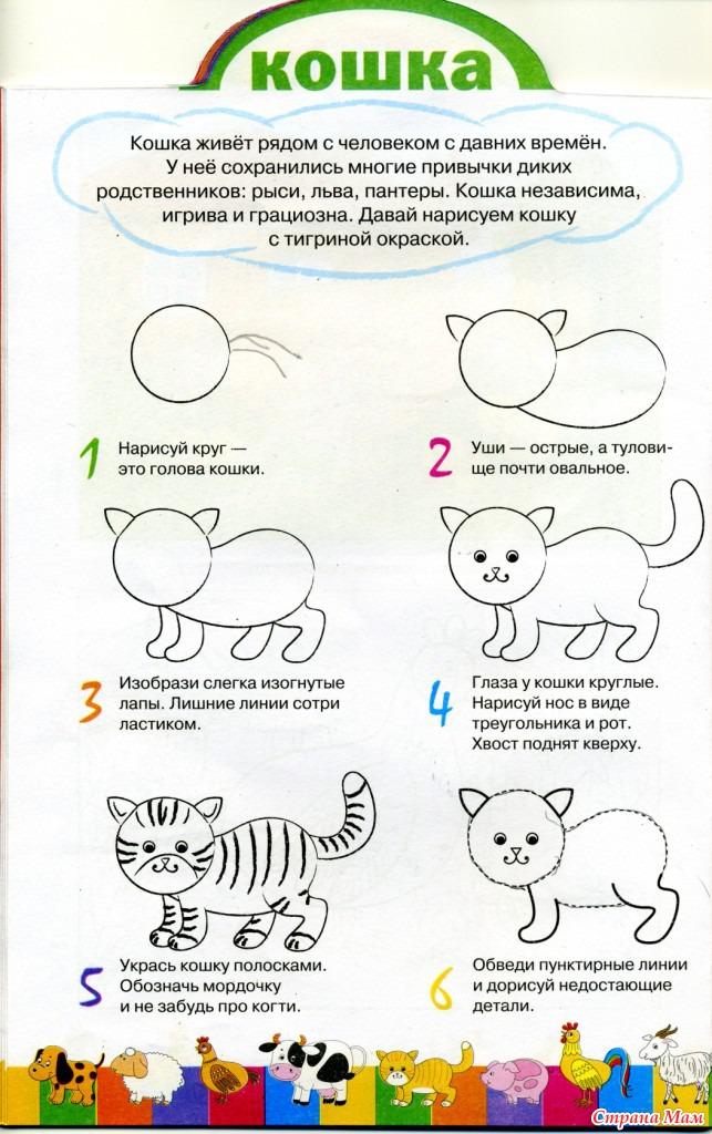 Как учить детей рисовать в средней группе