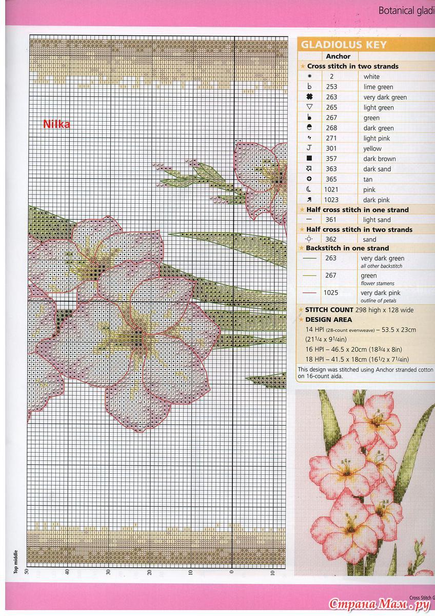 Гладиолусы схема для вышивки крестом 314