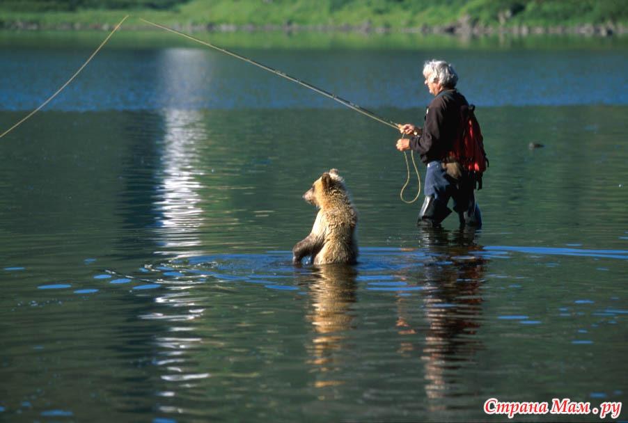 весенняя рыбалка на медведице