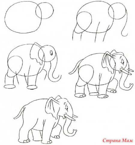 Тэги: животные, рисование
