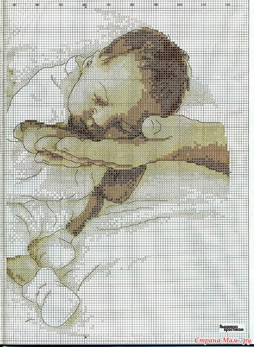 Схема вышивки младенца купить