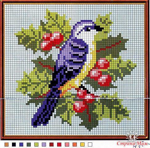 вышивка крестиком птицы схема