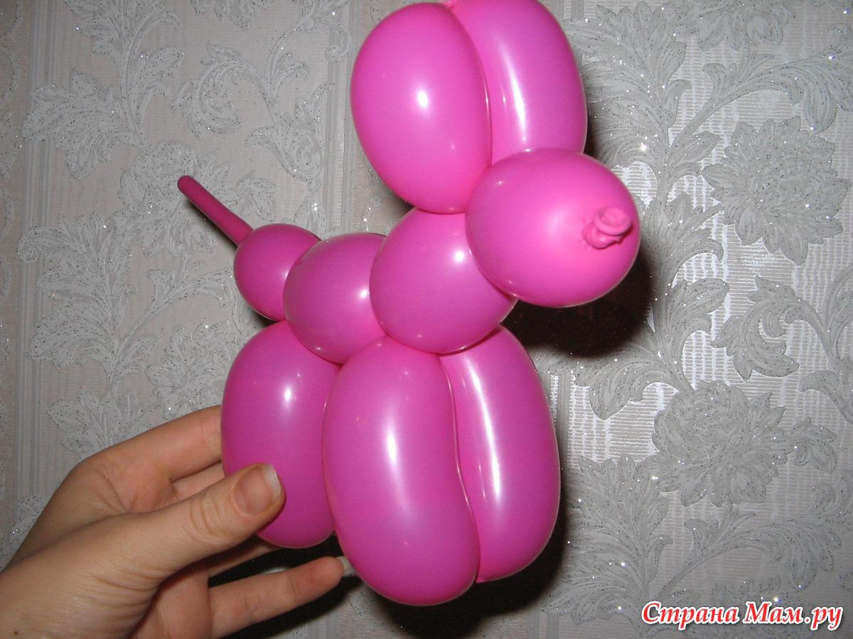 Как из одного длинного шарика сделать собачку