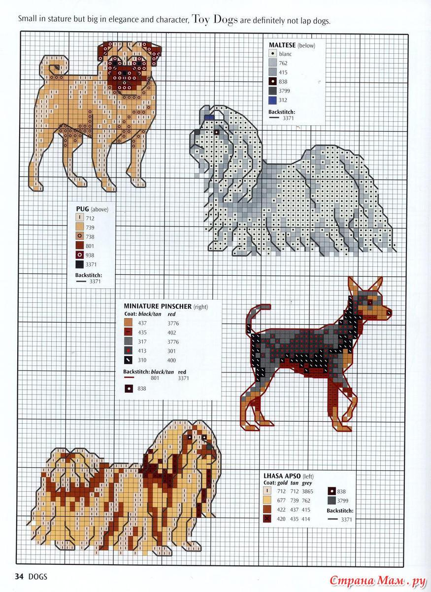 Схемы по вышивке крестом собака