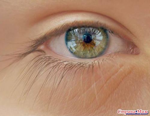 Серо-карий цвет глаз