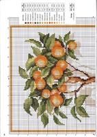 Схема вышивки апельсинового дерева