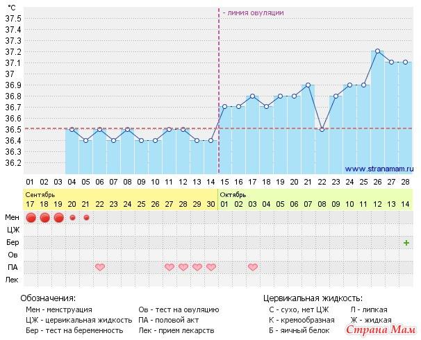 18 день цикла имплантация
