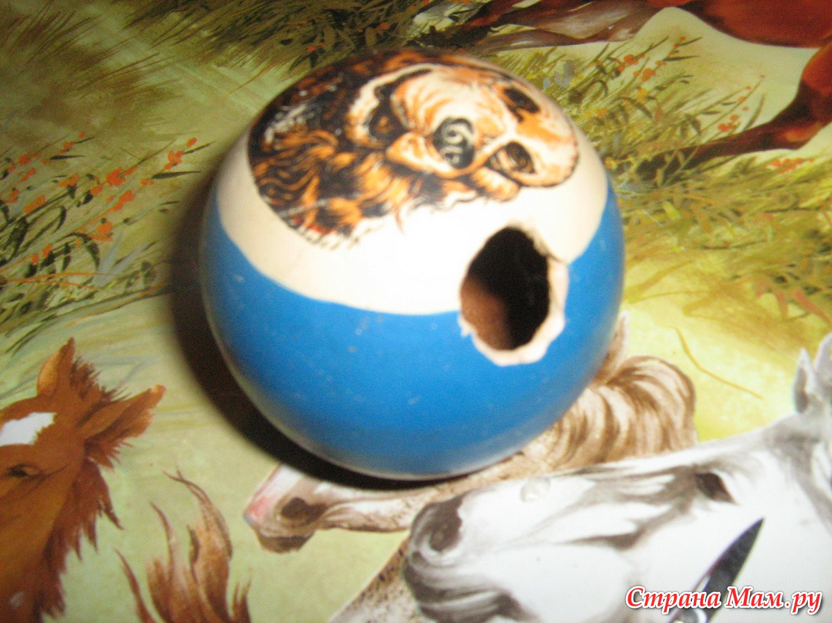 Игрушки для кошки за 5 минут
