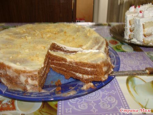 торты из готового бисквита быстрого приготовления с фото