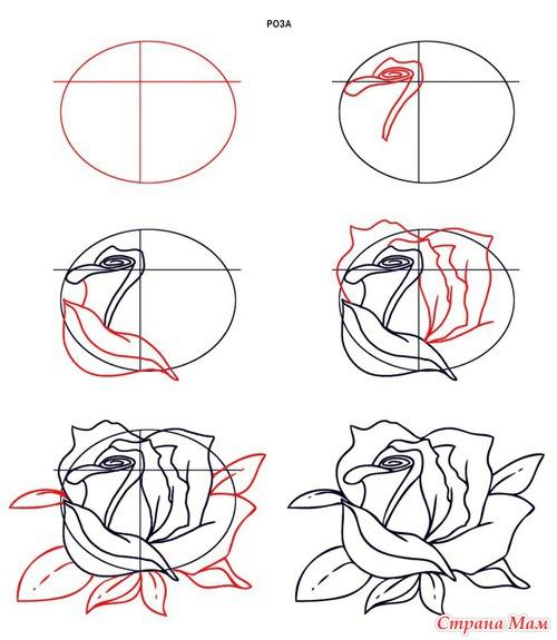 Как нарисовать розу. Рубрика:
