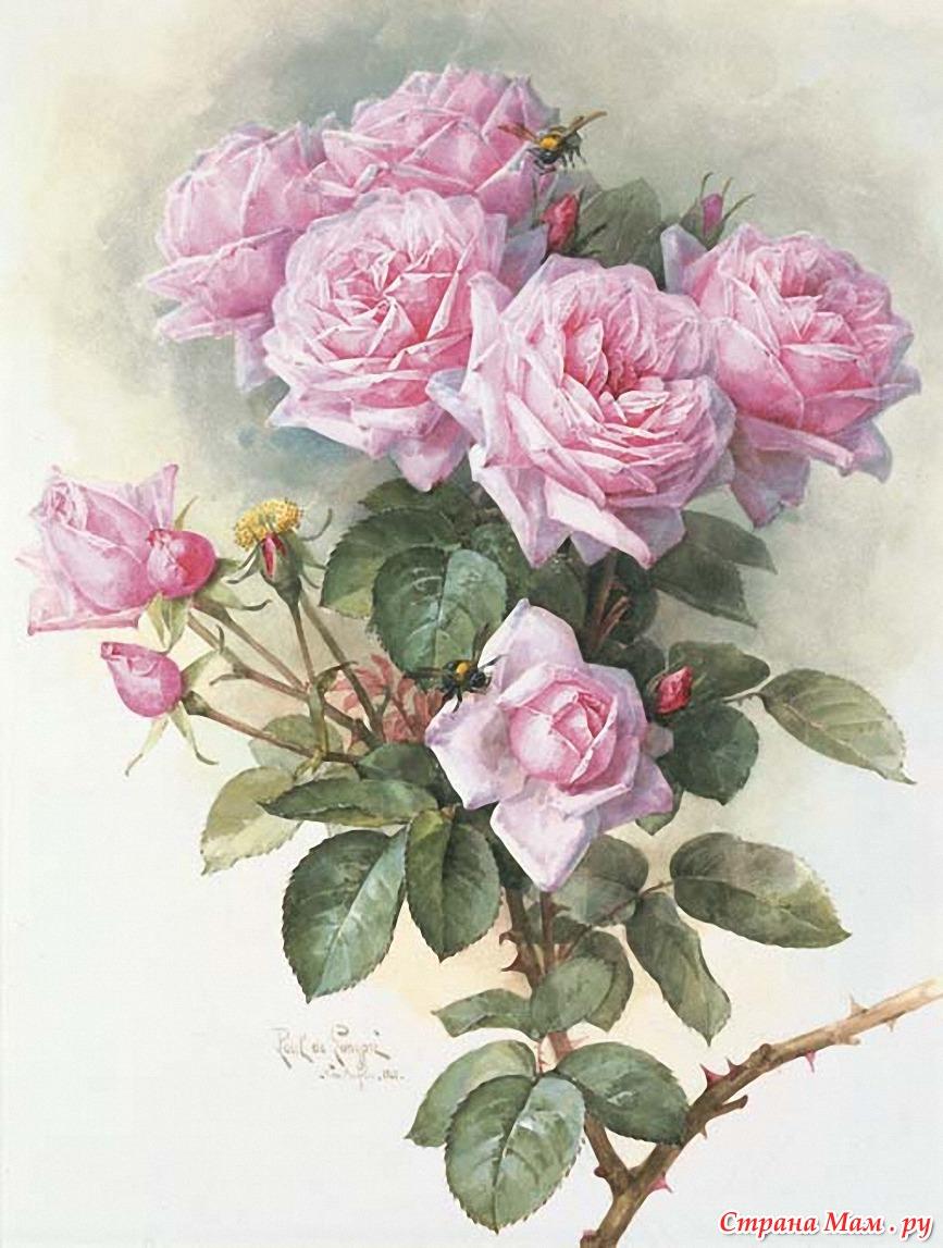 картинки цветов для декупажа: