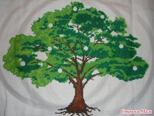 """""""Денежного дерева"""" ."""