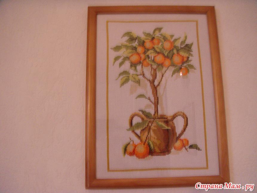 Схема лимонного и апельсинового дерева