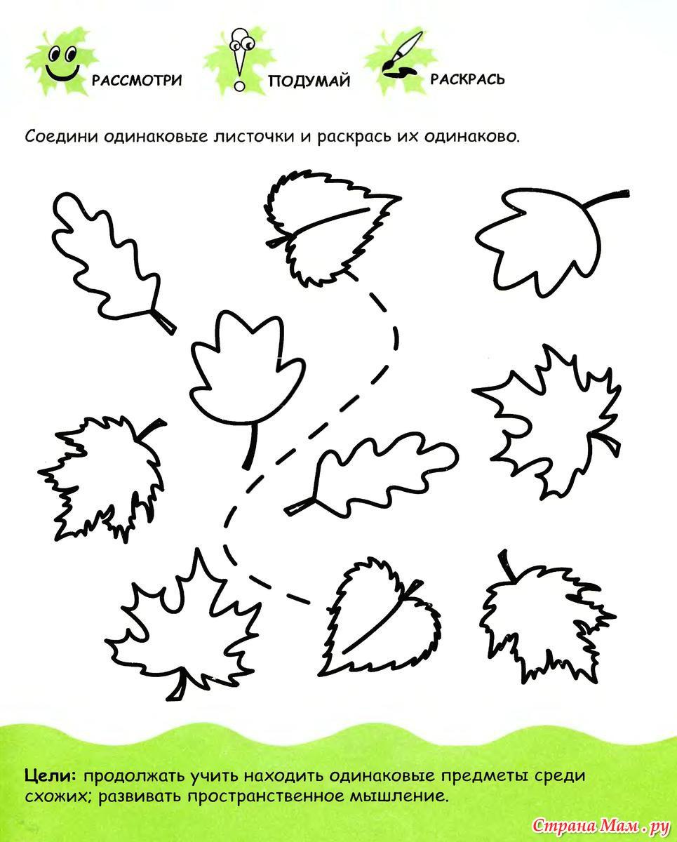 Развивающие материалы для детей 4-5 лет