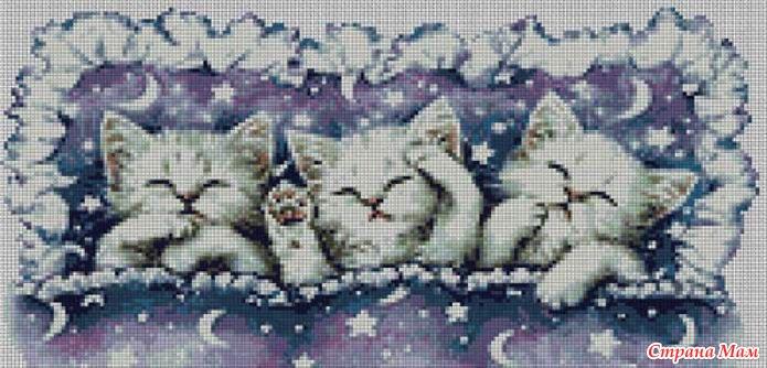 Вышивка спящие котята