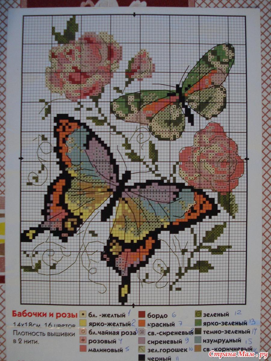 Купить раскраски по номерам по сюжету бабочки в Москве 5