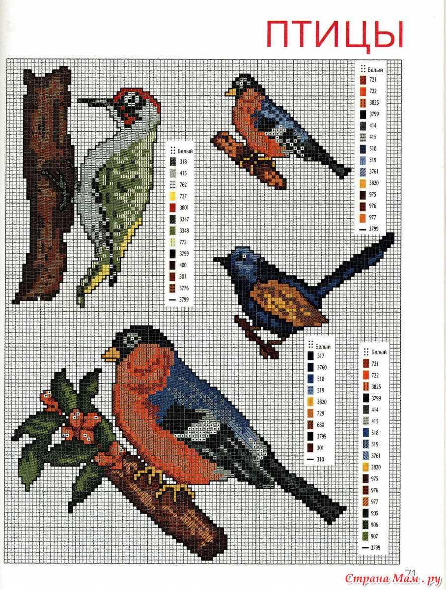 Схемы для вышивки крестом птиц