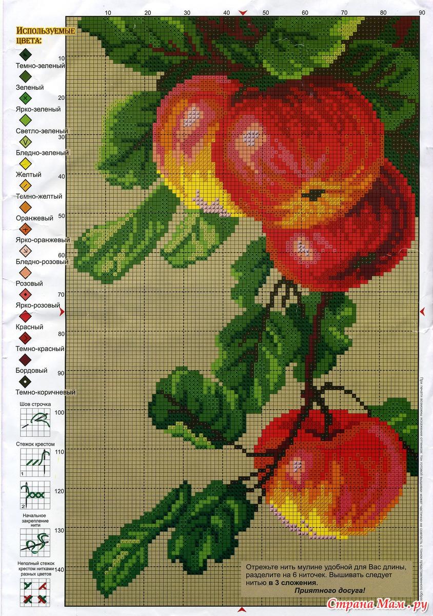 Яблочный спас вышивка крестом схема 67
