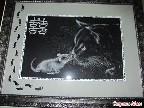 Вышивка котов на черной канве 424
