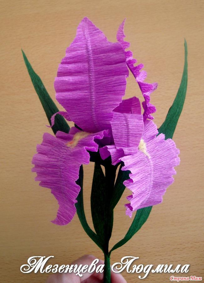 Ирис цветы из бумаги