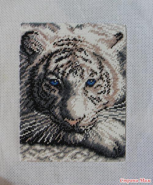 Тигр вышитый бисером