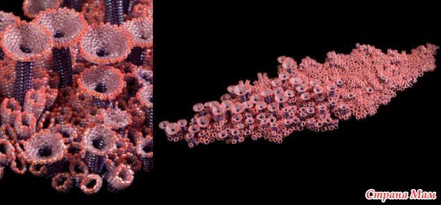 Бисер с кораллами