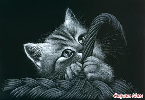 Коты гармашовой вышивка