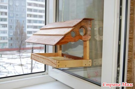 А вы кормите птиц зимой? - Страна Мам