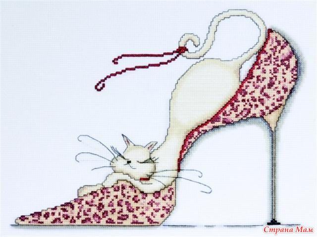 Кошка в туфельке