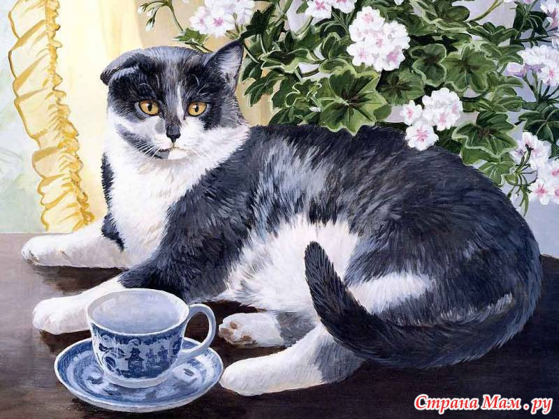 Рисовать кошку на столе
