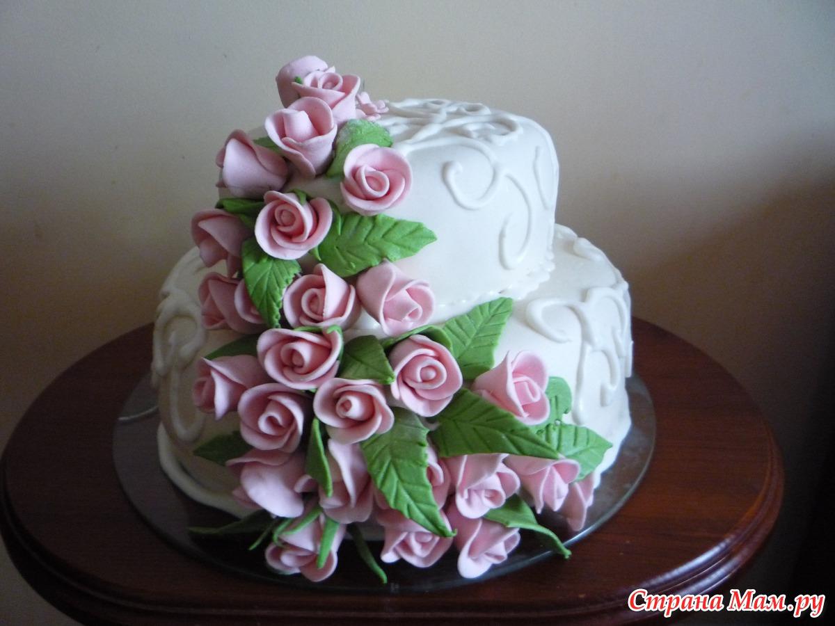 Розовые розы светке соколовой 20 фотография