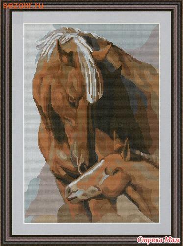 G495 Белые лошади