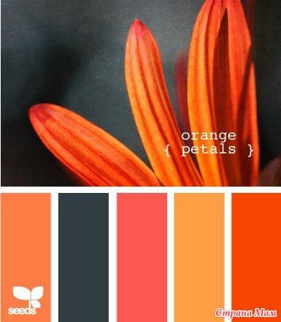 Сочетание цветов ярких
