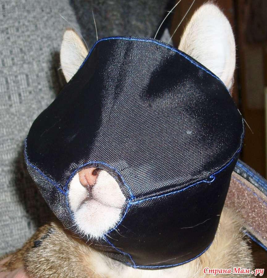 Намордники для собак мелких пород и котов - Гардероб для наших ...