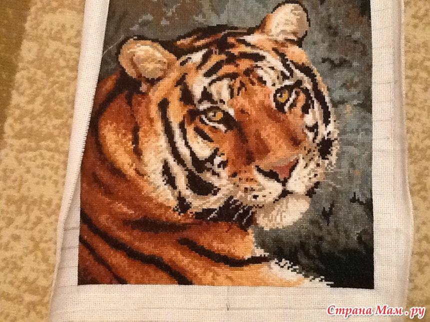 Амурский тигр схема вышивки