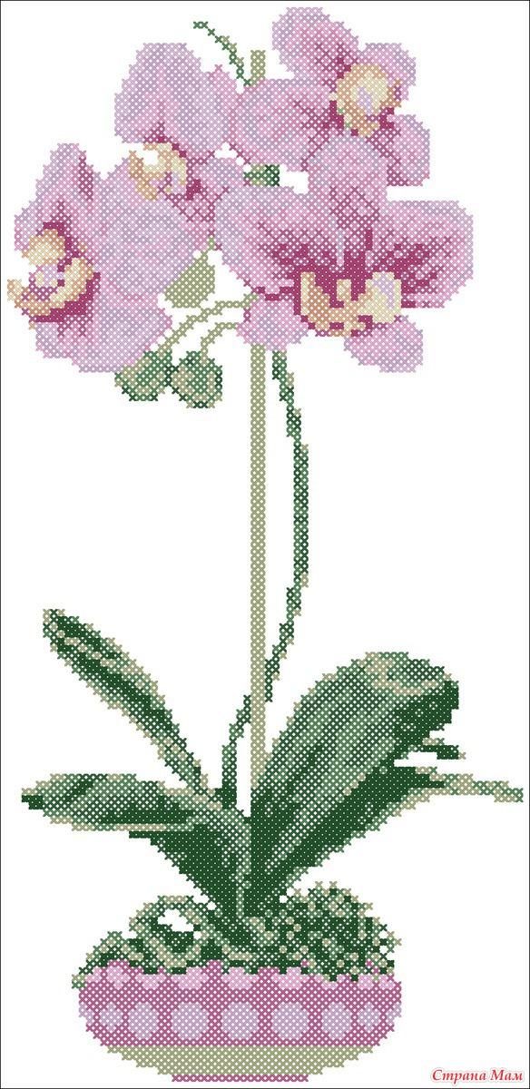 Орхидеи - вышивка (схемы в РМ)