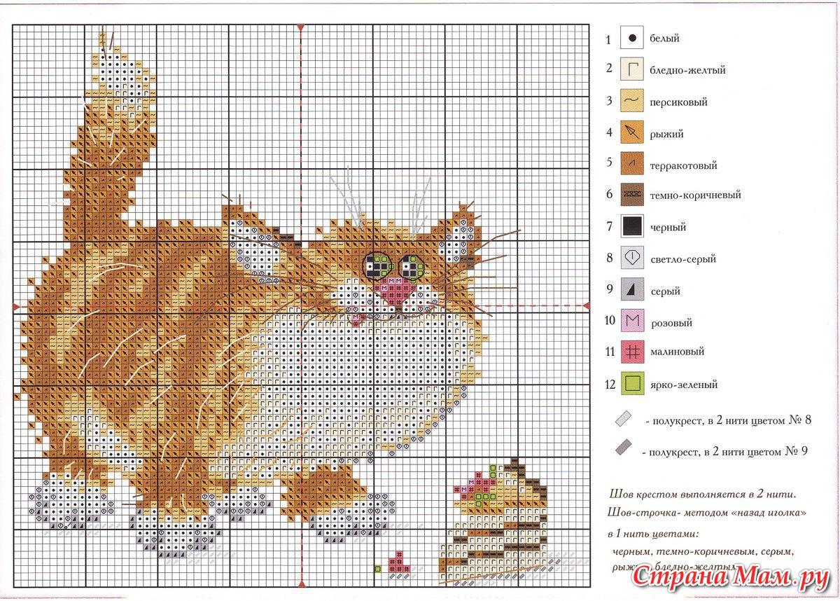Схемы вышивок рыжих котов