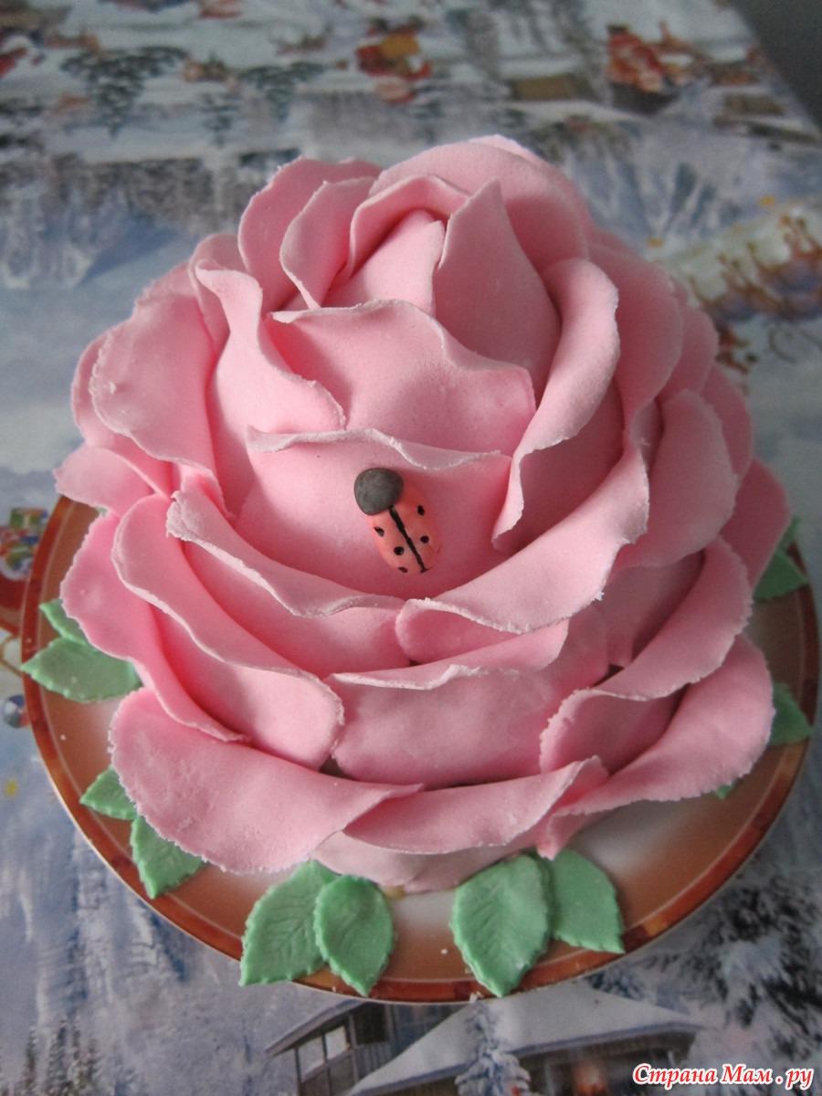 Розочки из масляного крема для торта пошаговый рецепт