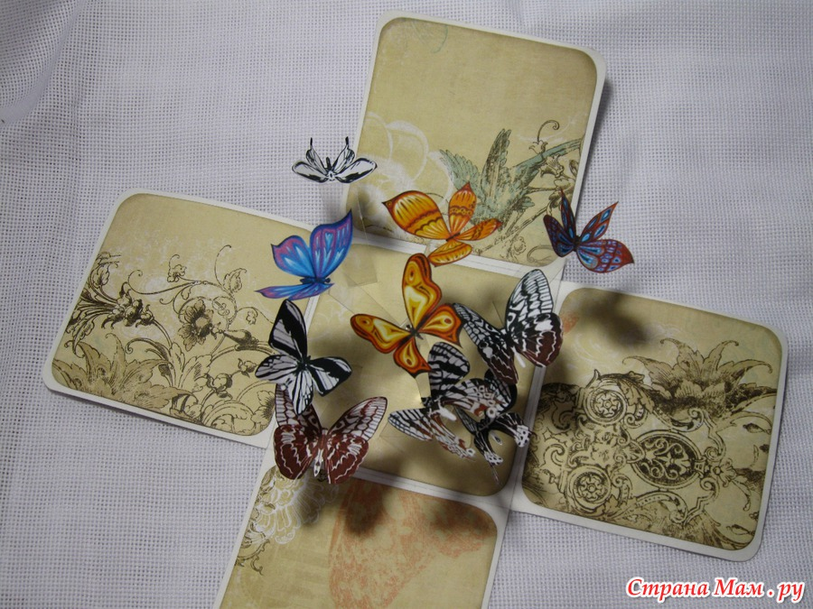 Коробочка для бабочки своими руками