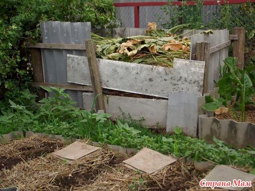 Про грядки, урожай и компостную яму.